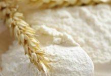 Siembra de trigo