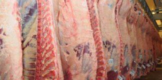 Exportación de carne vacuna en junio