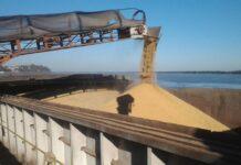 bolsa de cereales- impuesto a la riqueza