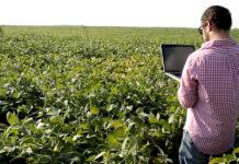 software de gestión para la empresa agropecuaria