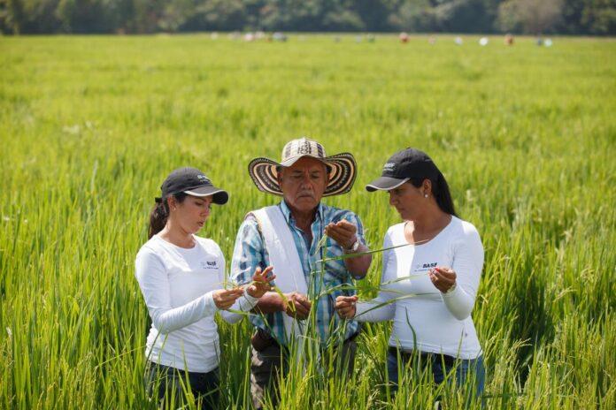 Día mujeres en el agro