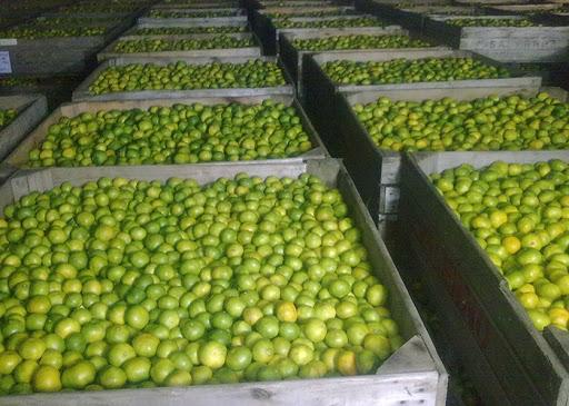 Empaque de frutas frescas