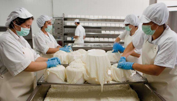 Establecimientos lácteos de elaboración artesanal