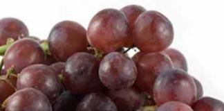 Harina de uva