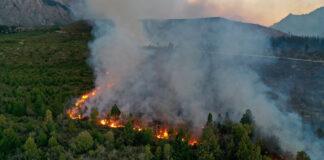incendios bosques
