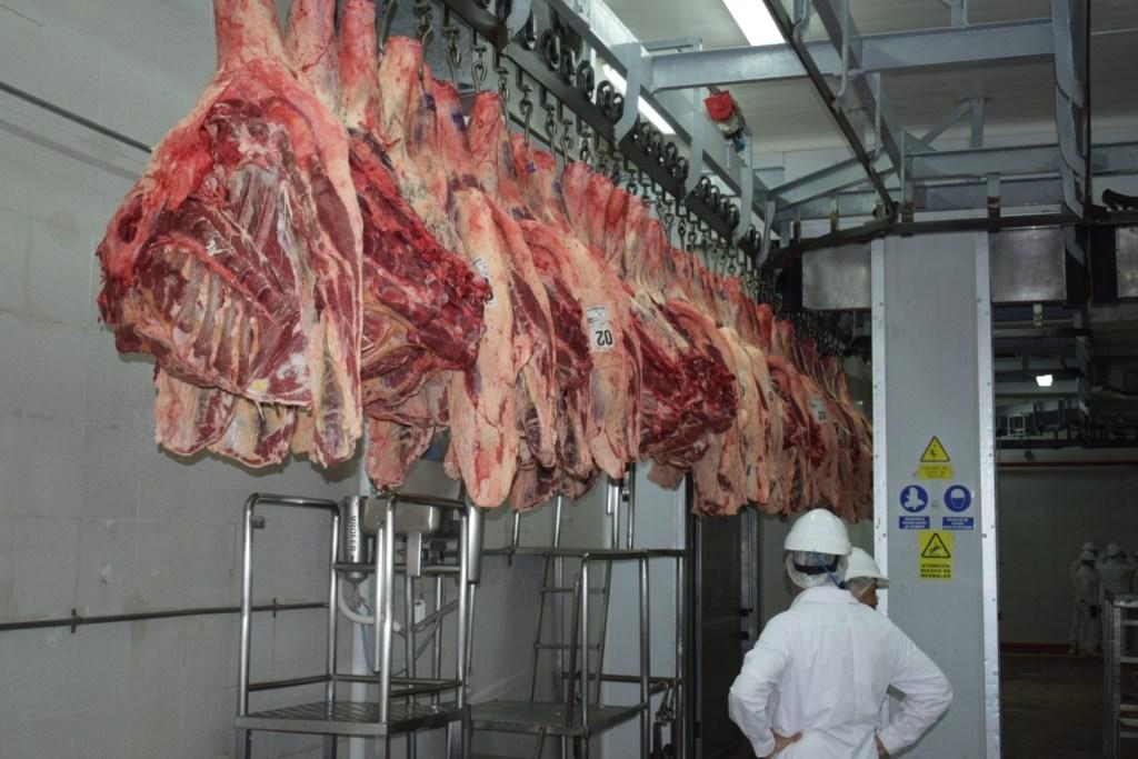 troceo para la comercialización de carne vacuna