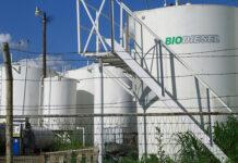 biocombustibles biodiesel